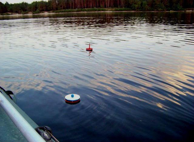 Как ловить судака на живца