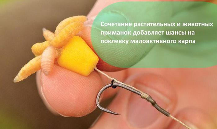 Рыболовные кружки